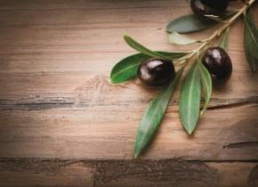 Olivy kalamata