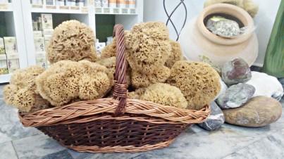 Přírodní mořská houba medové plástve extra velká